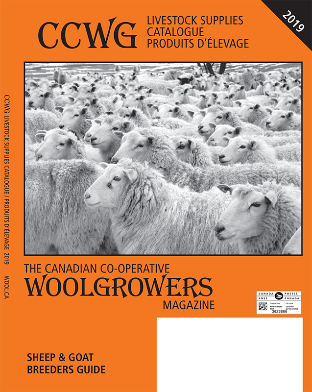 [CCWG Magazine / catalogue for 20179